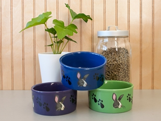 Bunny And Paw Print Bowl
